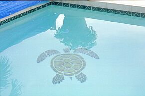 Tiled Honu in Pool